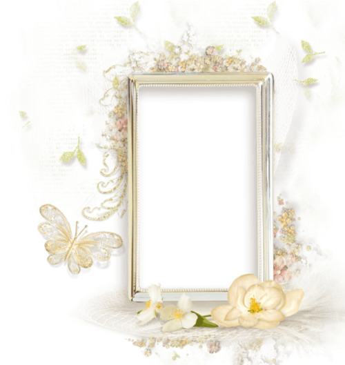 toppng.com-beautiful-cream-transparent-frame-with-flowers-beautiful-flowers-photo-frames-568x601.png