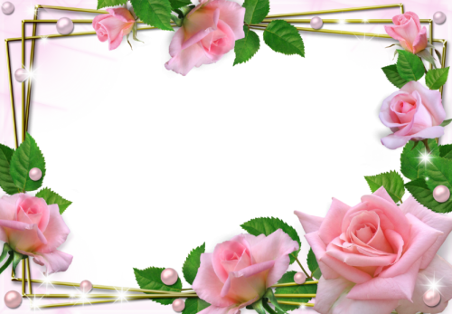 toppng.com-beautiful-pink-roses-photo-frame-beautiful-flower-frames-and-borders-1280x888.png