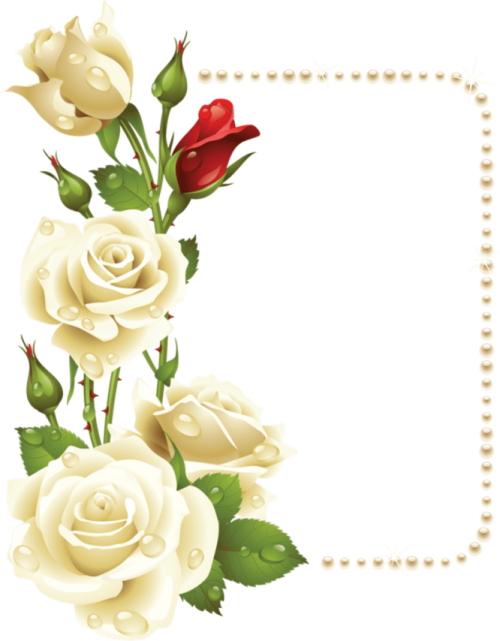 toppng.com-borders-and-frames-vintage-frames-frame-background-white-rose-corner-800x1026.png