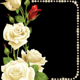 toppng.com-borders-and-frames-vintage-frames-frame-background-white-rose-corner-800x1026